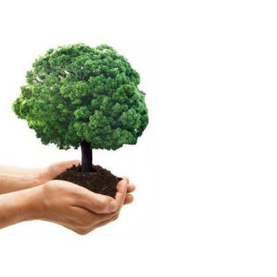 IDEA di Idroterm: una scelta green ed ecosostenibile per ristrutturare il tuo Bagno